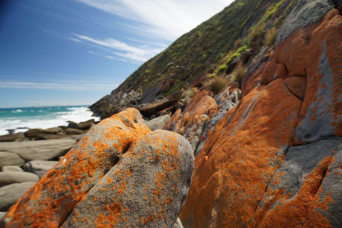 Aaron Cove walking trail Fleurieu Peninsula